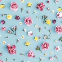 Servietten 24x24 cm - Spring Melody