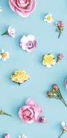 Taschentücher - Spring Melody