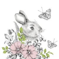 Servietten 33x33 cm - Graphite bunny