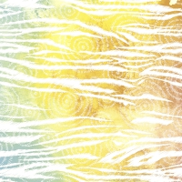 Servietten 24x24 cm - Colorful zebra