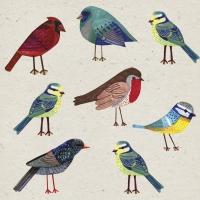Servietten 33x33 cm - Birds