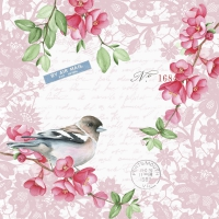 Servietten 33x33 cm - Sweet bird