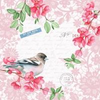 Servietten 24x24 cm - Sweet bird