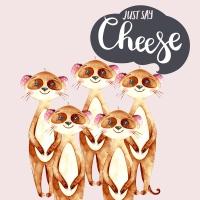 Servietten 33x33 cm - Say Cheese