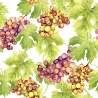 Servietten 24x24 cm - Grapes