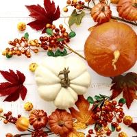 Servietten 33x33 cm - Pumpkin & leaves