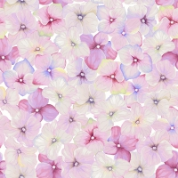 Servietten 24x24 cm - Small blossoms