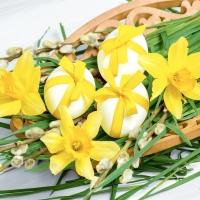 Servietten 33x33 cm - Easter decoration