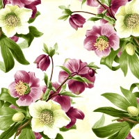 Servietten 33x33 cm - Easter rose