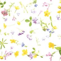 Servietten 33x33 cm - Scattered flowers