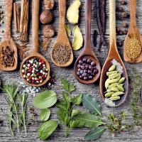 Servietten 33x33 cm - Spices & herbs