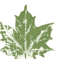 Gestanzte Servietten - Maple leaf green