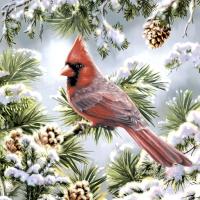 Servietten 33x33 cm - Red cardinal