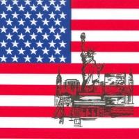 50 Servietten 33x33 cm - America