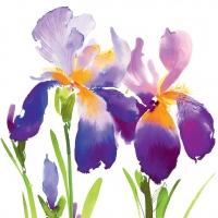 Servietten 25x25 cm - Lila Iris
