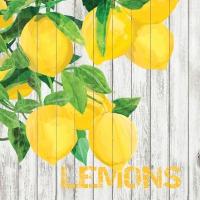 Cocktail Servietten Harvest Lemons