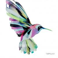 Servietten 25x25 cm - Corfu Hummingbird
