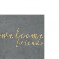 Servietten 25x25 cm - Friends cement