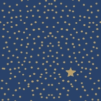 Servietten 25x25 cm - The Star Money dark blue