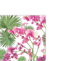 Servietten 25x25 cm - Orchids & Palms