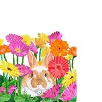 Servietten 25x25 cm - Gerbera Bunny