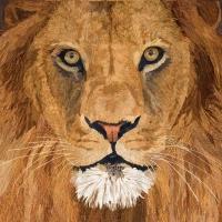 Servietten 25x25 cm - Sauvage Lion