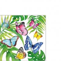 Servietten 25x25 cm - Tropical Butterflies