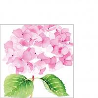 Servietten 25x25 cm - Hydrangea rosé