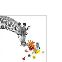 Servietten 25x25 cm - Happy Giraffe