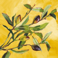Servietten 25x25 cm - Olive Musée