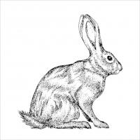 Lunch Servietten Mod Rabbit black white