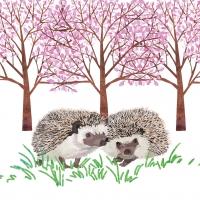 Lunch Servietten Hyde Park Hedgehogs