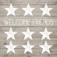 Servietten 33x33 cm - Welcome Friends