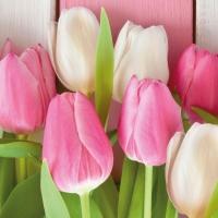 Servietten 33x33 cm - White & Pink Tulips