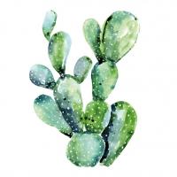 Servietten 33x33 cm - Cactus