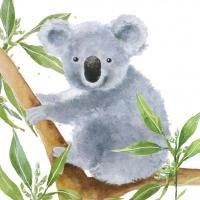 Lunch Servietten Tropical Koala Bear