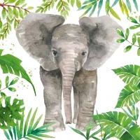 Servietten 33x33 cm - Tropischer Elefant