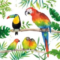 Lunch Servietten Tropical Birds