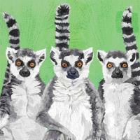 Servietten 33x33 cm - Lemur Amigos