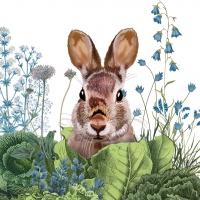 Servietten 33x33 cm - Chou Chou Bunny