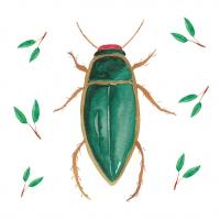 Servietten 33x33 cm - Green Scarab