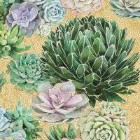 Servietten 33x33 cm - Succulents