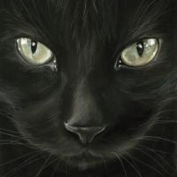 Servietten 33x33 cm - Black Cat
