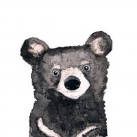 Servietten 33x33 cm - Bear
