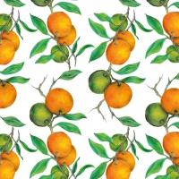 Servietten 33x33 cm - Beautiful Oranges