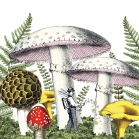 Servietten 33x33 cm - Mushrooms