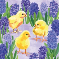 Servietten 33x33 cm - Chicks in Hyacinth