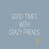 Servietten 33x33 cm - Crazy Friends blue