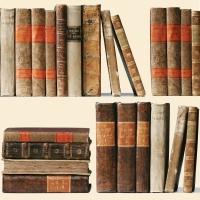 Servietten 33x33 cm - Libri Antichi