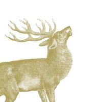 Servietten 25x25 cm - Eingravierter Hirsch
